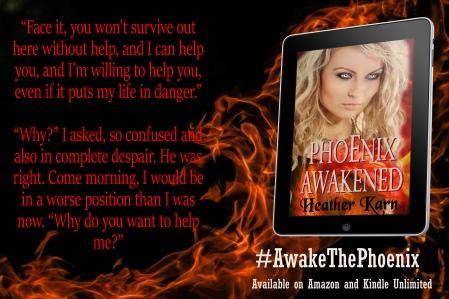 Phoenix Teaser 4